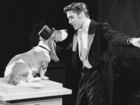 Elvis Presley: Graceland's unseen rooms – Inside The King's dog collars closet